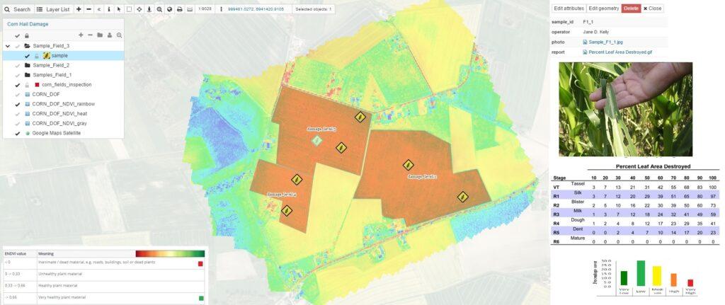 NDVI crop map