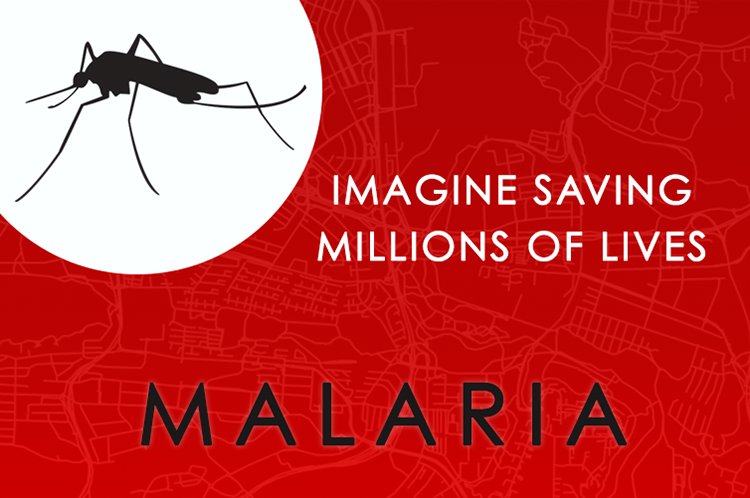 Malaria GIS Day project