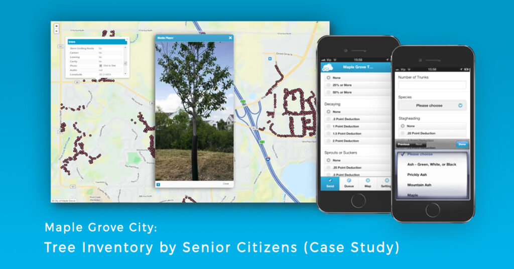 Tree Inventory in the City of Maple Grove (Case Study)