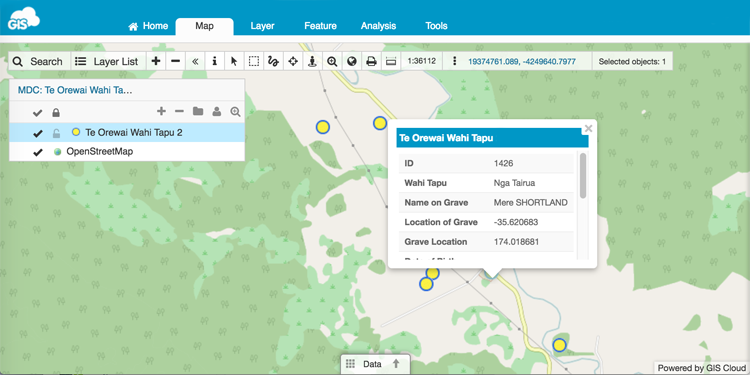 Mobile Data Collection GIS project