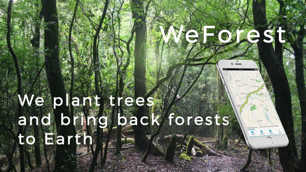 Using GIS for Environmental Protection and Saving Forests