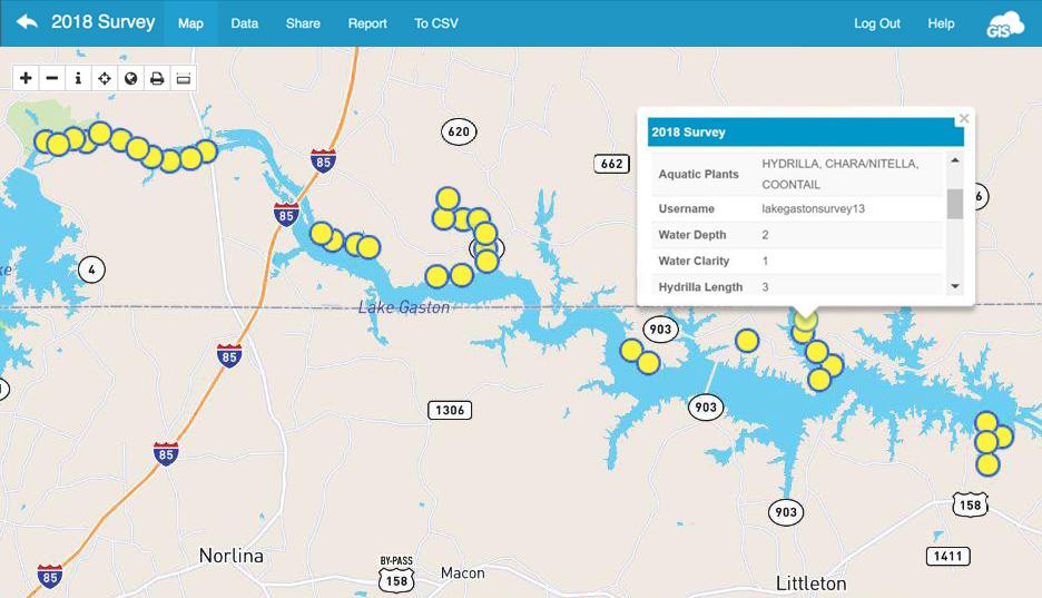 vegetation survey and shoreline GIS survey map