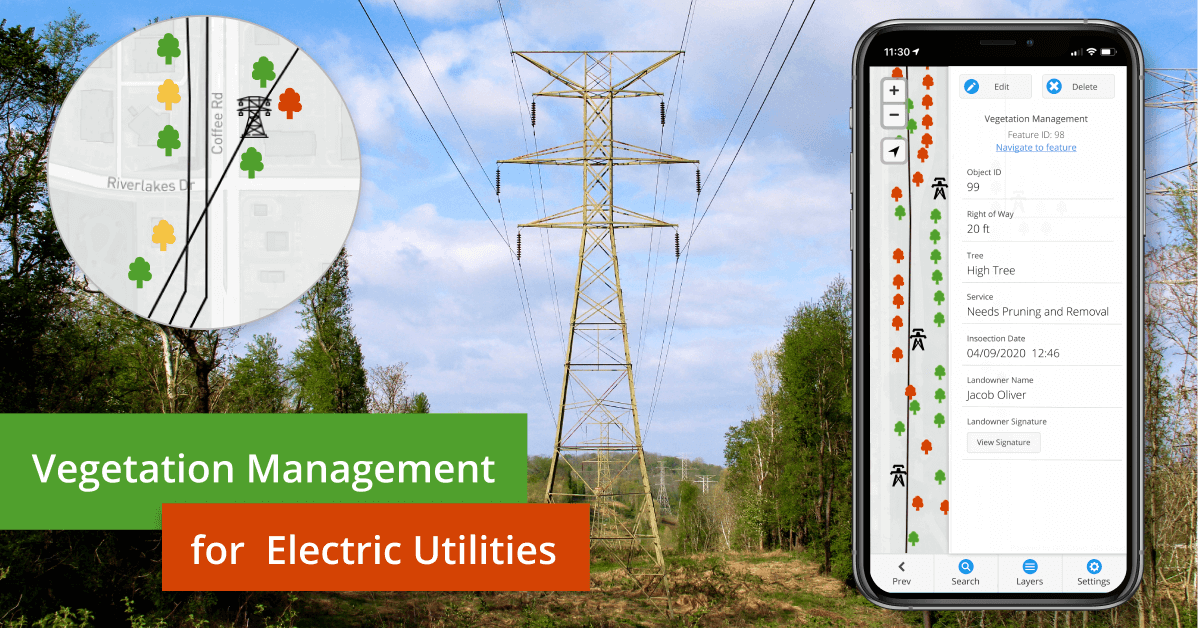Vegetation Management for Power Line Companies