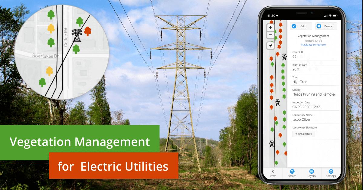 Vegetation Management for Power Line Companies